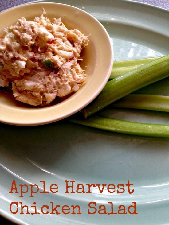 Apple Harvest Chicken Salad Recipe