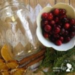 DIY Holiday Scented Potpourri