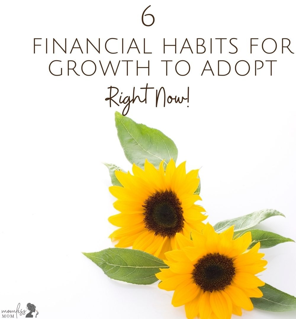 6 financila habits for growth